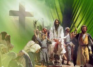 Savior-Riding-foal-of-an-ass-Zechariah-9-9-10