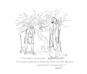 Parable of Fig Tree-01