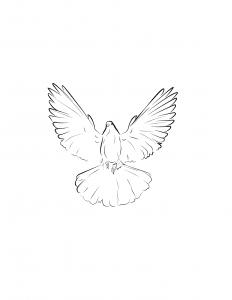 Spirit Gives Life-02